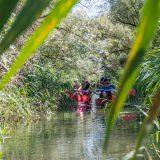 Spring Reizen kano kampeerweekend in de Biesbosch 10 (Bas Wetter)