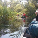 Spring Reizen kano kampeerweekend in de Biesbosch 12 (Joav Gertner)