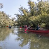 Spring Reizen kano kampeerweekend in de Biesbosch 13 (Bas Wetter)