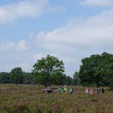 Op zondag namen we afscheid van de cameraploeg en maakten een mooie wandeltocht over de Veluwse heide (Peter)