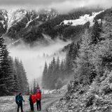 """08 Bij Dorfgastein wandelen we weer omhoog, het laatste stuk naar de top Fulseck op 2000 m nemen we een gondel lift (<a href=""""https://baswetter.photography"""" target=""""_blank"""" rel=""""noopener noreferrer"""">Bas Wetter</a>)"""