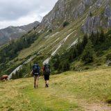 """21 De Salzburger Almenweg leidt ons door de mooie Alpen met afwisselende begroeiing (<a href=""""https://baswetter.photography"""" target=""""_blank"""" rel=""""noopener noreferrer"""">Bas Wetter</a>)"""