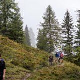 """30 Nog een klein stuk wandelen door de bossen op weg naar de laatste Alm van onze huttentocht (<a href=""""https://baswetter.photography"""" target=""""_blank"""" rel=""""noopener noreferrer"""">Bas Wetter</a>)"""