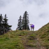 """31 Eerst nog wel een verdwaalde Zwitserse Milka koe op ons pad (<a href=""""https://baswetter.photography"""" target=""""_blank"""" rel=""""noopener noreferrer"""">Bas Wetter</a>)"""