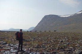 Ga mee op avontuur naar de bergen in het grensgebied van Noorwegen en Zweden (Roos Lantink)
