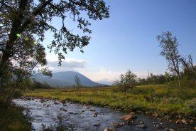 In de dalen liggen oude bossen waar wij vanaf de hoger gelegen bergen uitzicht op zullen hebben (Guillaume Baviere)