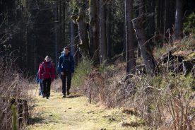Wandeltrektocht in Ertsgebergte (Bastiaan van Kesteren)